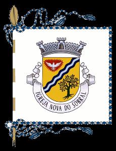 Símbolos Heráldicos: Estandarte da Junta de Freguesia da Igreja Nova do Sobral